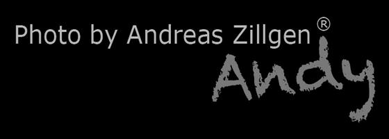Andreas Zillgen