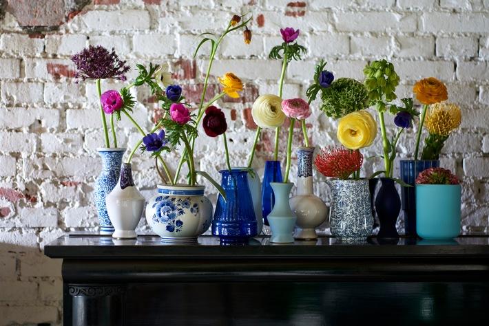Frühlingserwachen mit farbenfrohem Blütenarrangement / Ranunkel, Anemone und Nadelkissen-Protea begrüßen den Frühling / Angeordnet in bunten Glas- oder Porzellanvasen kommt die Unverwechselbarkeit der einzelnen Frühlingsblumen besonders zur Geltung.